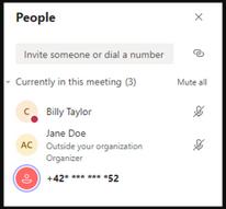 Teams: Yenilik ve Geliştirmeler - Masking phone numbers